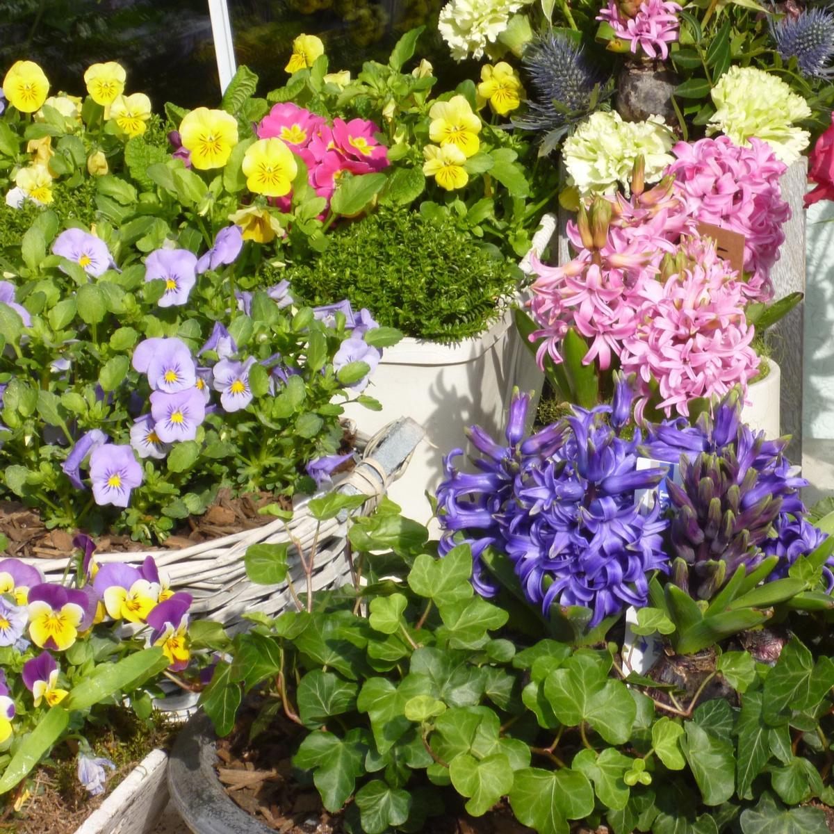 HS Remnant Flower Sales